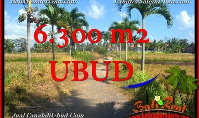 INVESTASI PROPERTI, JUAL MURAH TANAH di UBUD TJUB662