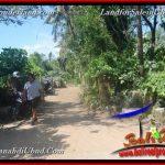 TANAH MURAH JUAL UBUD 40 Are View Kebun / tebing