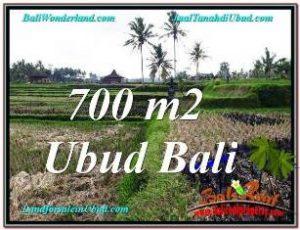JUAL TANAH MURAH di UBUD 700 m2  VIEW SAWAH, LINGKUNGAN VILLA