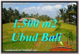 TANAH MURAH DIJUAL di UBUD BALI Untuk INVESTASI TJUB668