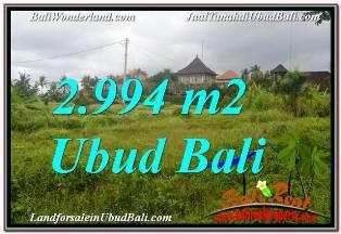 JUAL TANAH di UBUD 2,994 m2 VIEW SAWAH DAN VILLA