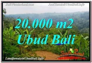 JUAL MURAH TANAH di UBUD 20,000 m2 VIEW SUNGAI DAN TEBING