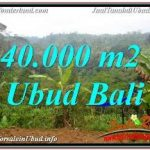 TANAH di UBUD BALI DIJUAL TJUB679