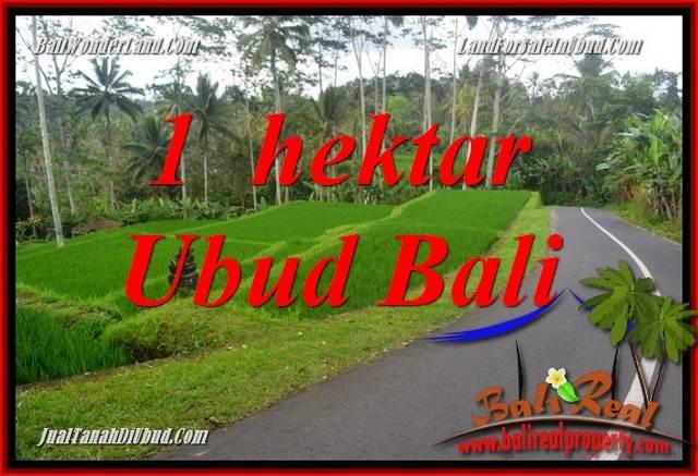JUAL Murah Tanah di Ubud 10,000 m2  View Sungai dan Tebing