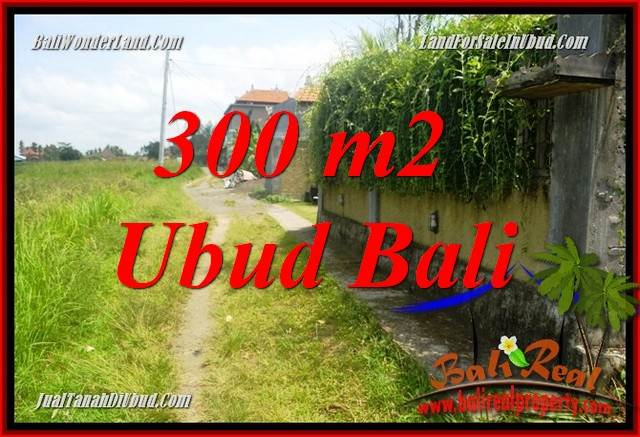 Tanah Dijual di Ubud Bali 3 Are di Lod Tunduh