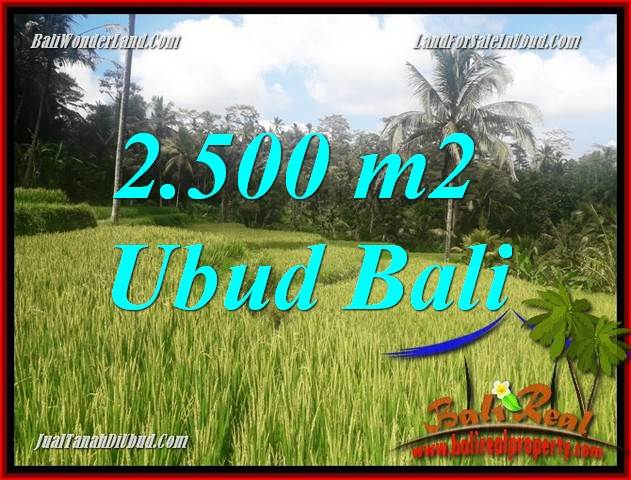 Tanah Dijual di Ubud Bali 25 Are di Ubud Tegalalang