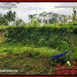 Dijual Murah Tanah di Ubud Untuk Investasi TJUB691
