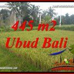 JUAL Murah Tanah di Ubud Bali 4 Are View sawah, lingkungan Villa
