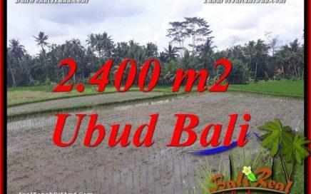 JUAL Murah Tanah di Ubud Bali 24 Are di Ubud Pejeng