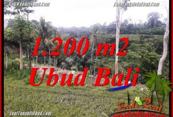 Tanah di Ubud Bali Dijual 12 Are View sawah dan sungai