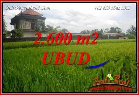 Tanah Murah jual Ubud 26 Are View sawah lingk. villa