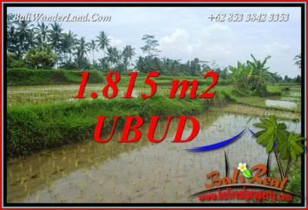 Investasi Property, Tanah di Ubud Dijual Murah TJUB703