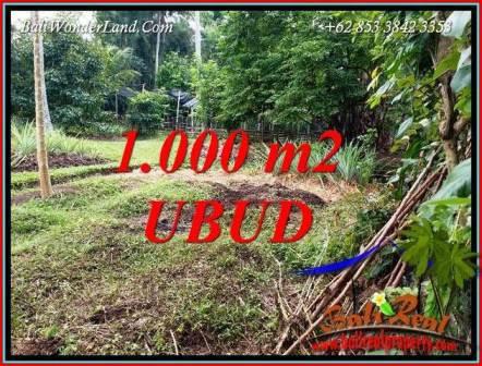 Tanah Murah di Ubud Bali Dijual 1,000 m2 di Sentral Ubud