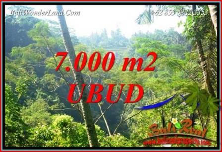 Dijual Murah Tanah di Ubud 70 Are di Ubud Tegalalang