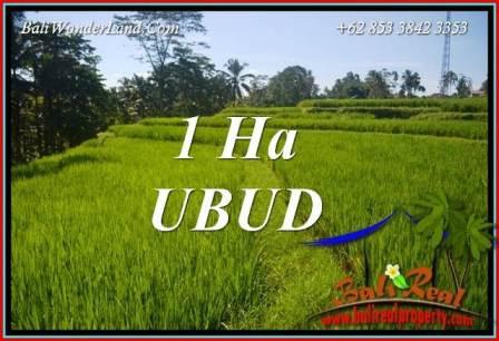 Tanah Dijual di Ubud Bali 10,000 m2 di Ubud Tegalalang