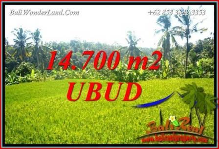 JUAL Tanah di Ubud Bali TJUB717