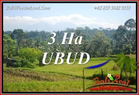 Investasi Property, jual Tanah di Ubud TJUB718