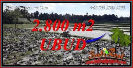 JUAL Tanah di Ubud Bali 28 Are View Sawah