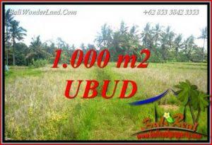 Tanah di Ubud jual Murah 10 Are View Sawah Lingkungan Villa