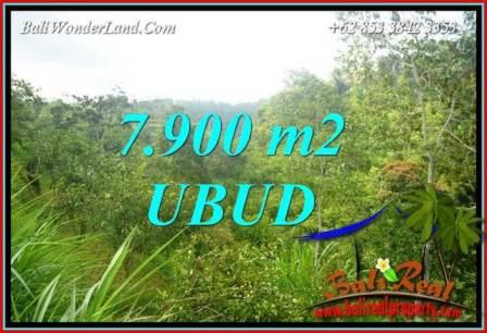 Tanah Dijual di Ubud 7,900 m2 View Tebing dan sungai