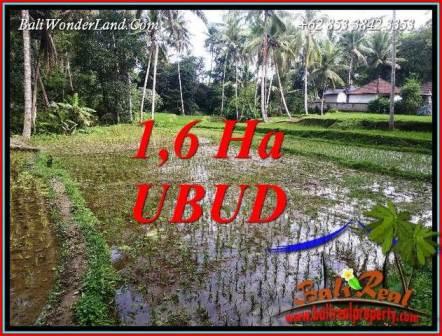 Tanah Murah jual di Ubud Bali 16,000 m2  View sawah dan sungai