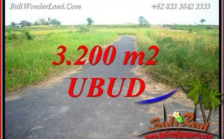 Tanah Murah jual Ubud 3,200 m2 View sawah
