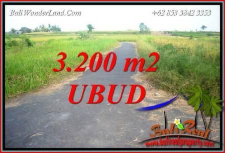 Tanah di Ubud Dijual Murah 3,200 m2 di Ubud Singapadu
