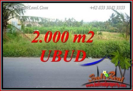 Investasi Properti, Dijual Tanah di Ubud TJUB737