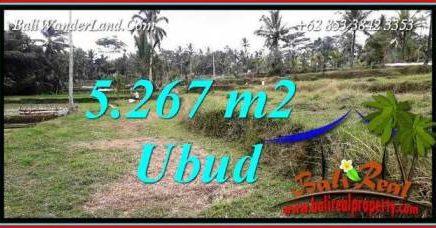 Dijual Murah Tanah di Ubud Bali TJUB743