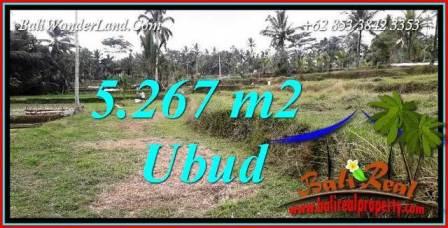 Investasi Properti, Tanah Murah Dijual di Ubud TJUB743
