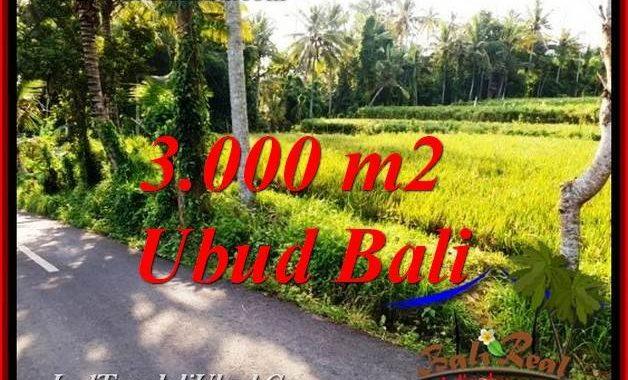 TANAH MURAH JUAL UBUD 3,000 m2 VIEW SAWAH, SUNGAI LINGKUNGAN VILLA