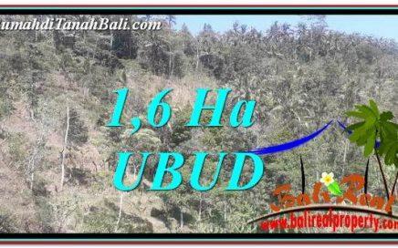 INVESTASI PROPERTY, JUAL TANAH di UBUD BALI TJUB748