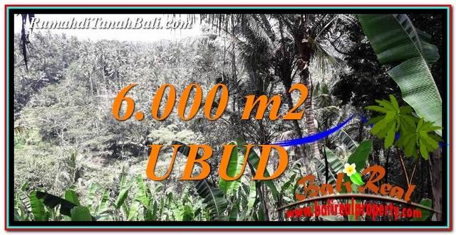 TANAH DIJUAL di UBUD BALI 6,000 m2 View Sawah tebing dan Sungai