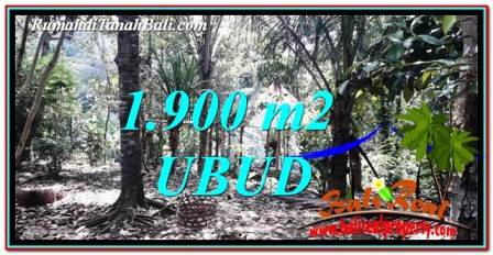 JUAL TANAH di UBUD BALI 1,900 m2 View Sawah dan Sungai Kecil