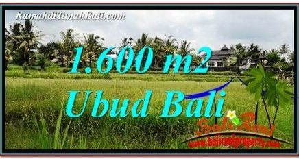 TANAH MURAH di UBUD BALI DIJUAL 1,600 m2 di Ubud Tampak Siring