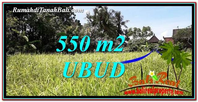 DIJUAL MURAH TANAH di UBUD Untuk INVESTASI TJUB766