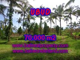 Tanah dijual di Ubud TJUB358 View sawah, gunung, sungai, hutan, nusa dua di Ubud Payangan