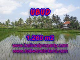 Tanah dijual di Ubud TJUB328 view sawah di Dekat sentral Ubud