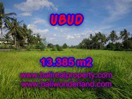 Tanah di Ubud dijual 133,85 Are View sawah di dekat Sentral Ubud