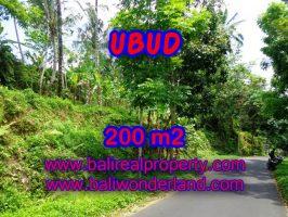 Tanah di Bali dijual murah 200 m2 di Ubud Tegalalang