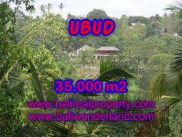 Jual tanah di Ubud Bali 35.000 m2 View sawah, gunung, sungai dan hutan di Ubud Payangan