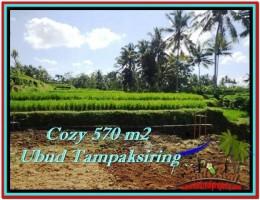 DIJUAL TANAH di UBUD BALI 570 m2 di Ubud Tampak Siring