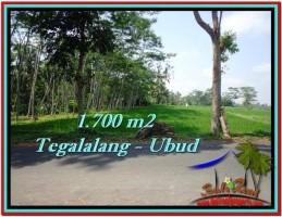 TANAH DIJUAL MURAH di UBUD BALI 1,700 m2 di Ubud Tegalalang