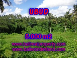 Tanah dijual di Bali 50 Are di Dekat sentral Ubud