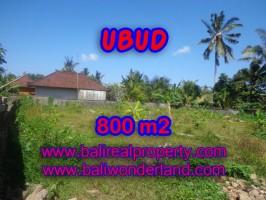 Tanah dijual di Bali 800 m2 view alami di Dekat sentral Ubud