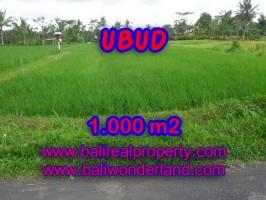 Tanah di Bali dijual 1.000 m2 di Ubud Tampak siring