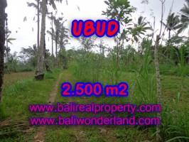 Jual tanah di Ubud 25 Are View tebing dan hutan di Ubud Tegalalang