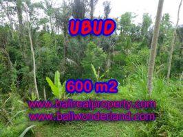Tanah di Bali dijual 600 m2 di Ubud Tegalalang