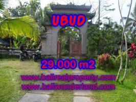 Tanah di Ubud Bali dijual View sungai, sawah dan tebing murah di Ubud Payangan