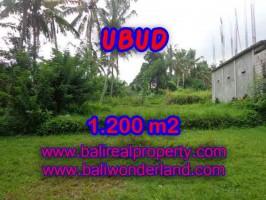 TANAH MURAH DI UBUD BALI DIJUAL TJUB399 - INVESTASI PROPERTY DI BALI